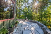 Lower_Spruce_Hedge_1066